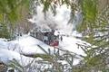 Prin zăpadă cu Mocanita Viseu de Sus